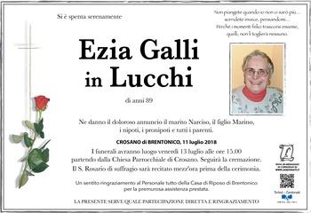 Galli Ezia in Lucchi